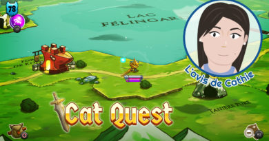 l'avis de cathie : cat quest